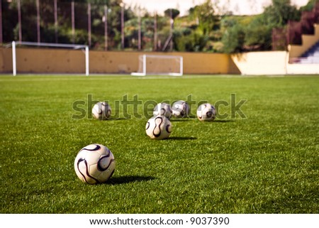 soccer or football ball in green grass