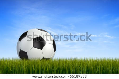 Soccerball on grass