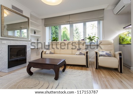 Sofa and armchair in bright living room