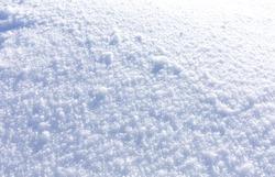 Soft and pure white snow covers the floor in winter with natural sunlight, season texture background. Fuzz freeze snowy surface in cold weather.