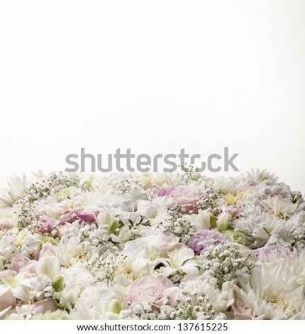 soft arrangement of beautiful pastel flowers on a white background