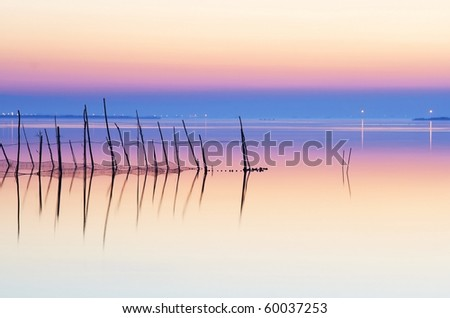 soft colors in the water