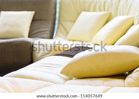 Soft cushion in sofa,living room