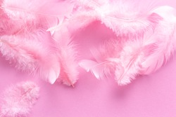 Soft, fluffy coral pink feathers on pastel rose background. Minimalism style. Vintage trend. Feather texture background. Soft and gentle pink feathers background. Mauve pink feather fashion design