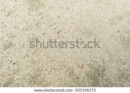 Soft focus of tropical beach with shells, stones, crab hole and bubble sand on the wet sand.