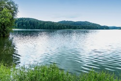 Soft focus on a lake in Germany. Cloudy day at the lake. Large trees on the far side of the lake. Beautiful natural background. An idea of the beauty of nature in Europe. Dense forest by the lake.