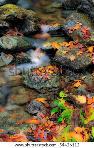 Soft focused image of a vermont stream in the fall