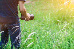 Soft Light and Blurred image, A photographer capturing the beautiful Grass flowers in the evening with a DSLR camera, photographers walking to capture the grass flowers in the beautiful grass alone.