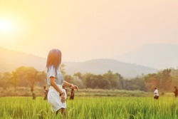 Soft light and Smooth,Young women are enjoying walking in the grasslands alone in the evening to wait to see the sunset that is hiding. Beautiful green rice fields on the sky background in the evening