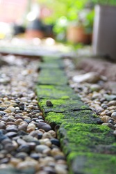 Soft light over the rain garden, perfect blend of hard texture and soft sense of bricks and green moss.Brick pattern and round pebble are use.Nature treatment can be around.Quiet and peace. Yin yang