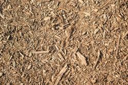 Soft, lightbrown mulch background or texture for paths, gardening
