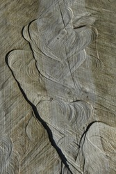 soft lines on the wooden surface. natural texture, abstract concept