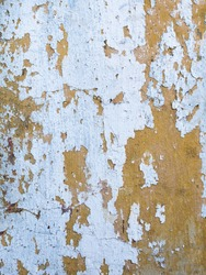 soft orange pastel vintage color congrete wall with cracks and faded covered by white is peel off