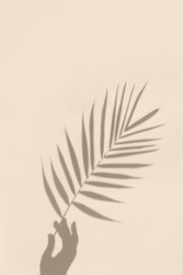 Soft shadows of hand holding a palm leaf on textured concrete background. Abstract minimal concept photo.