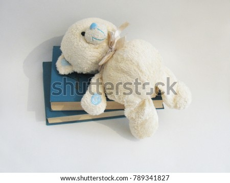Soft toy bear. #789341827