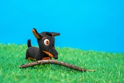Soft toy in shape of funny little black and tan dachshund dog plays with wooden stick on green grass of artificial lawn, blue background, front view, close up