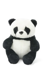 Soft Toy Panda on White Background