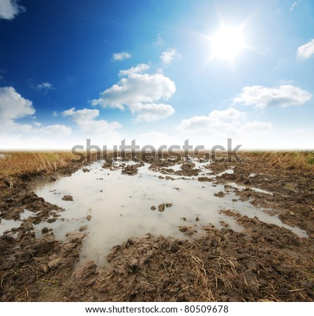 Soil Background mud puddle marsh well blue sky rice