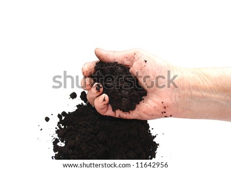 Soil black in hand