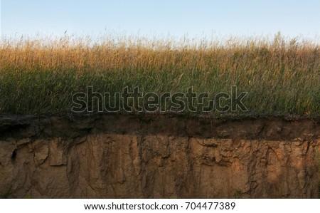 soil cross section #704477389