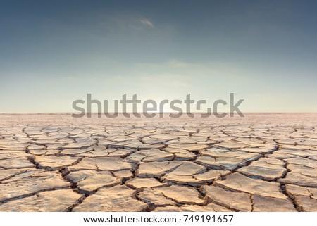 Soil drought cracked landscape on sunset sky