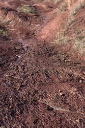 Soil erosion caused by rainwater and wind