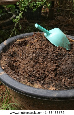 Soil for planting. Preparing soil for planting. Household agriculture. Homegrown vegetable.