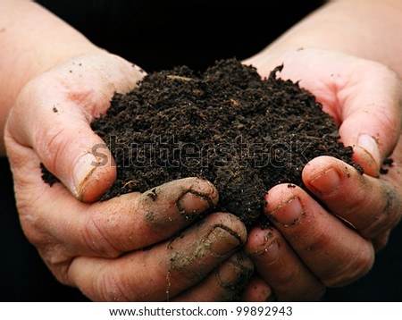 Soil in farmer arms. Macro image with selective focus.