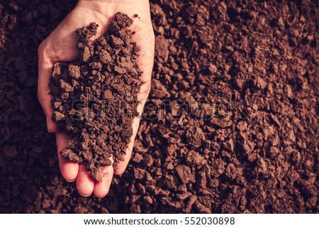 Soil in hand, palm, cultivated dirt, earth, ground, brown land background. Organic gardening, agriculture. Nature closeup. Environmental texture, pattern. Mud on field. Сток-фото ©