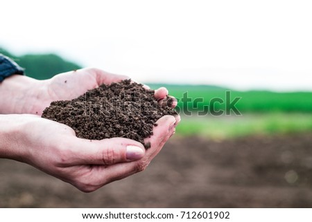 Soil in hand, palm, cultivated dirt, earth, ground, brown land background. Organic gardening, agriculture. Nature closeup. Environmental texture, pattern. Mud on field.