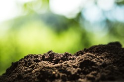 Soil in nature background