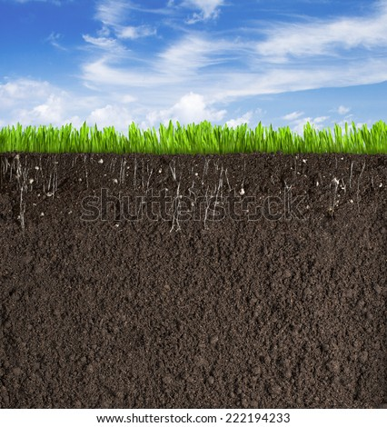 Soil or dirt section with grass under sky Stock photo ©