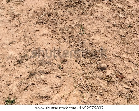 Soil or earth floor texture for background design stock photo