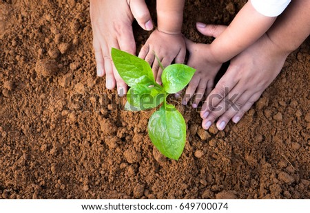 Soil Planting and Seeding concept,Close up kid hand and father planting young tree top view
