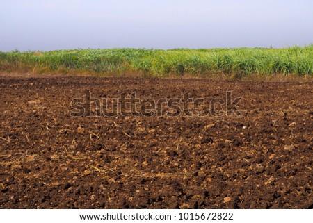 Soil preparation in thailand