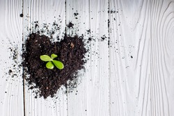 Soil shaped into heart symbol on white wooden background. ecology concept. Earth day concept. nurturing baby plant.
