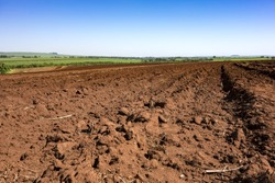 Soil soon after the peanut harvest on a sunny day in Sao Paulo, Brazil