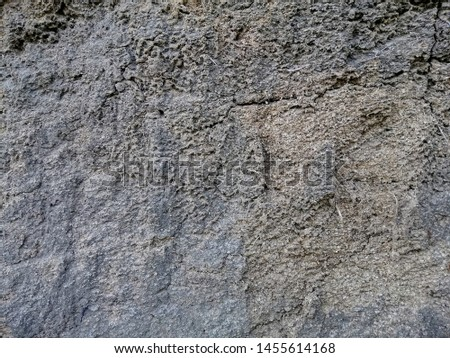 Soil texture background, Soil background, Texture of soil surface. #1455614168