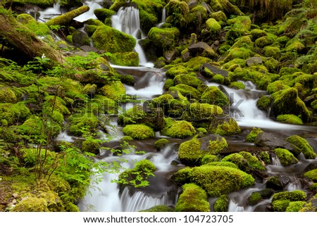 Sol Duc Creek, Olympic National Park, WA