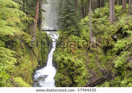 Sol Duc Falls at Olympic National Park, Washington State