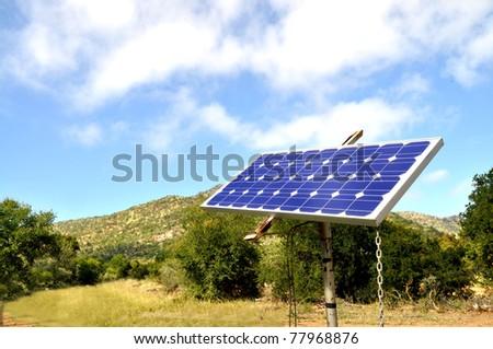 Solar energy panel on a pole for providing local energy
