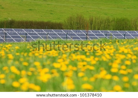solar panels and meadow with dandelions