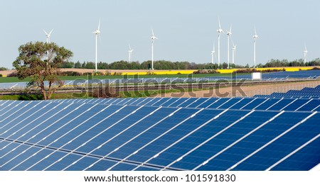 Solar panels and rapeseed field