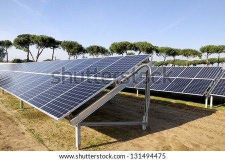 Solar panels in a photovoltaic power plant