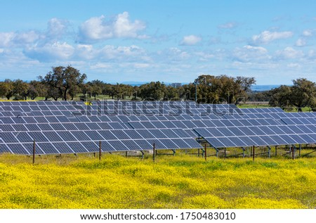 Solar panels of a solar plant among the Mediterranean forest in Sierra de San Pedro Mountain Range of Caceres province in Extremadura Autonomous Community of Spain, Europe