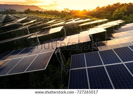 Solar panels (solar cell) in solar farm with blue sky and sun lighting.