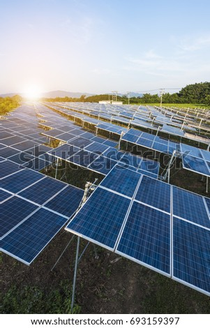 Solar panels (solar cell) in solar farm with sun lighting to create the clean electric power #693159397