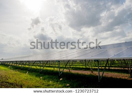 Solar panels, solar panels, alternative power supply - selected focus, copy space Natural energy #1230723712
