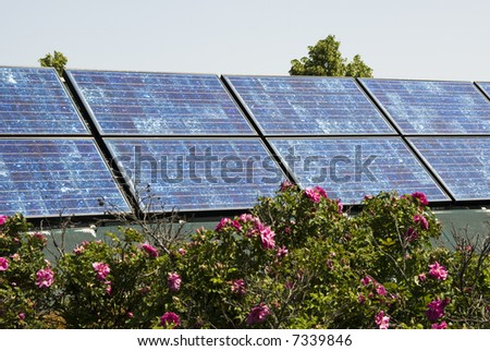 Solar panels with landscaping in an urban setting.