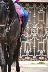 Soldier riding a horse during the changing of the guard at Madrid Royal Palace